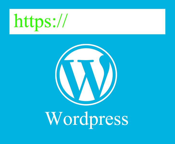 Wordpress https ssl